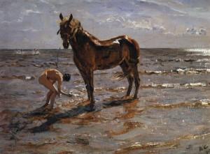 kupanie konja