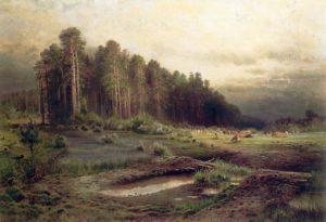 savrasov (2)